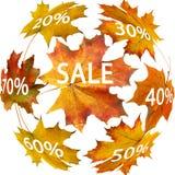 jesień liść sprzedaż Zdjęcie Royalty Free