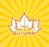 Jesień liść tło Obrazy Stock