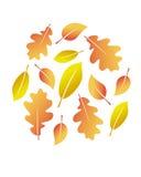 jesień liść wektor Obraz Royalty Free
