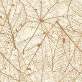 jesień liść wzór bezszwowy plus EPS10 Zdjęcie Stock
