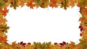 Jesień liści granica Obrazy Royalty Free
