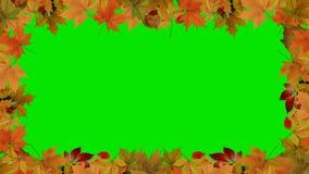 Jesień liści granica Zdjęcie Stock