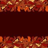 Jesień liści granica Jaskrawy barwiący Zdjęcie Royalty Free