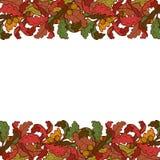 Jesień liści granica Jaskrawy barwiący Obraz Royalty Free