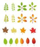 Jesień liści ikony i ilustracje Zdjęcie Stock