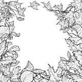 Jesień liści kwadrata rama Czarny i biały nakreślenie Obraz Royalty Free