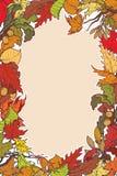 Jesień liści kwadrata rama Jaskrawy barwiący pionowo Obraz Stock
