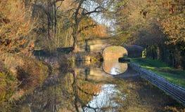 Jesień liści Llangollen kanał Obraz Stock