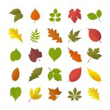 Jesień liści mieszkania ikony Ilustracja Wektor