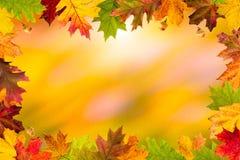Jesień liści rama Zdjęcie Royalty Free