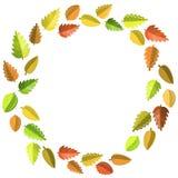 Jesień liści rama Zdjęcia Stock