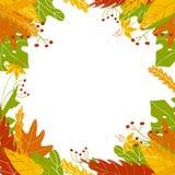 Jesień liści rama w ręka rysującym stylu royalty ilustracja