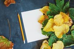 Jesień liści skład biały papier, filiżanka herbata Jesieni czarodziejka obrazy royalty free