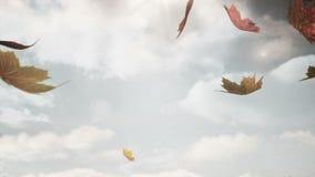 Jesień liści Spadać ilustracja wektor