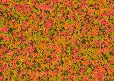 Jesień liści tła royalty ilustracja