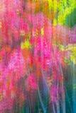 Jesień liści tekstura Abstrakta zamazany tło Strzelający z panning techniką Zdjęcia Stock
