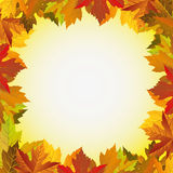 Jesień liścia rama Zdjęcie Royalty Free