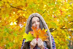 Jesień liście fotografia stock