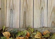 Jesień liście i beli rabatowy nieociosany drewniany tło Zdjęcia Stock