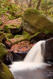 Jesień liście i Burbage strumyk w Padley wąwozie w Szczytowym okręgu Obrazy Royalty Free
