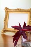 Jesień liście i fotografii rama Fotografia Stock