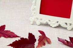 Jesień liście i rocznik rama dla fotografii Fotografia Stock