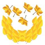 Jesień liście ikona i wektor Zdjęcie Royalty Free
