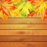Jesień liście klonowi i drewniane deski Zdjęcie Royalty Free