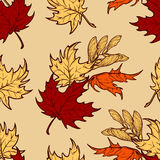 Jesień liście klonowi i seads bezszwowy wzór Obraz Royalty Free