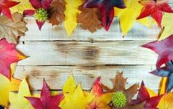 Jesień liście na drewnianym tle Zdjęcia Stock