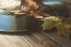 Jesień liście na rocznika winylowym rejestrze obraz stock