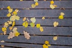 Jesień liście na starych drewnianych deskach Obraz Royalty Free