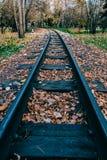 Jesień liście na tajnych agentach dla pociągu fotografia royalty free