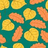 Jesień liście na white-01 Nawracali -01 Obraz Royalty Free