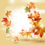 Jesień liście nad jaskrawym tłem Fotografia Stock