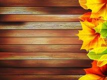 Jesień liście nad stary drewnianym plus EPS10 Zdjęcia Stock