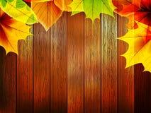 Jesień liście nad stary drewnianym plus EPS10 Zdjęcie Royalty Free