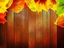 Jesień liście nad stary drewnianym plus EPS10 Zdjęcie Stock