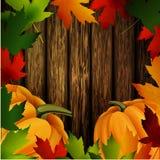 Jesień liście rama i banie na drewnianej teksturze ilustracji