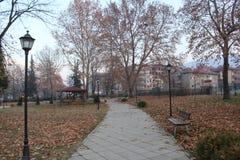 Jesień liście w parku w miasteczku Petrich w późnym listopadzie Pusty, osamotniony i piękny, Obrazy Royalty Free