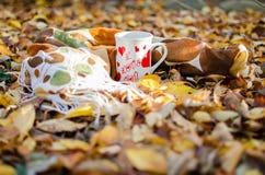 Jesień liście wokoło kawowych garnków Fotografia Stock