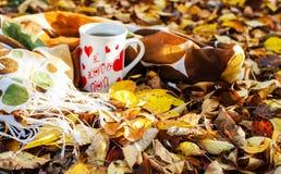 Jesień liście wokoło kawowych garnków Zdjęcie Royalty Free