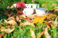 Jesień liście wokoło kawowych garnków Obraz Royalty Free
