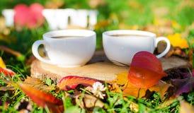 Jesień liście wokoło kawowych garnków Zdjęcia Stock