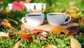 Jesień liście wokoło kawowych garnków Fotografia Royalty Free