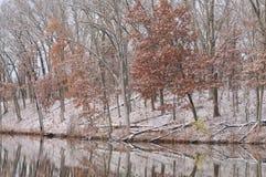 jesień linia brzegowa Zdjęcie Royalty Free