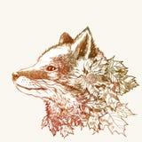 Jesień lis ilustracji
