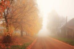 Jesień, mgła, ranek Zdjęcie Royalty Free