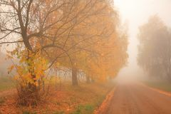 Jesień, mgła, ranek Zdjęcie Stock