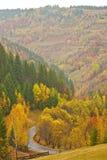 Jesień mgłowy krajobraz Obraz Stock